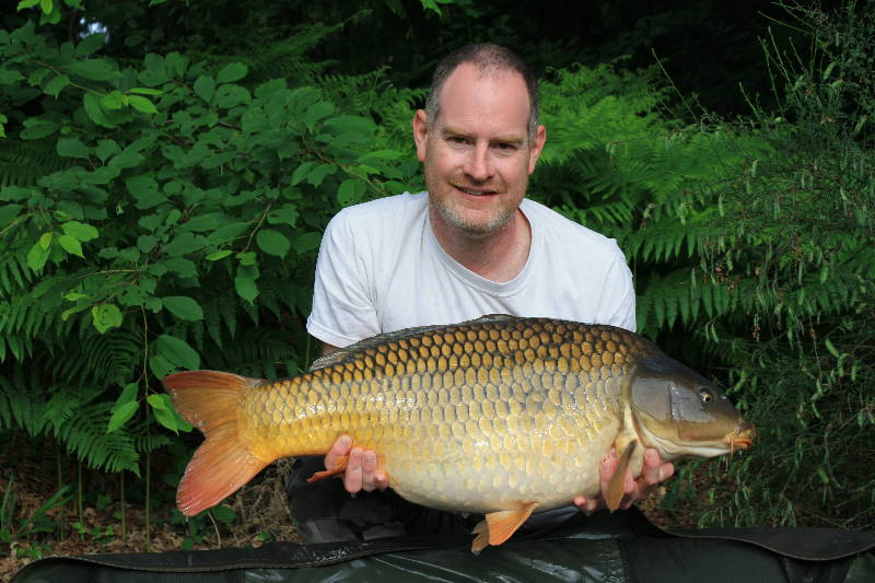Lovely Common